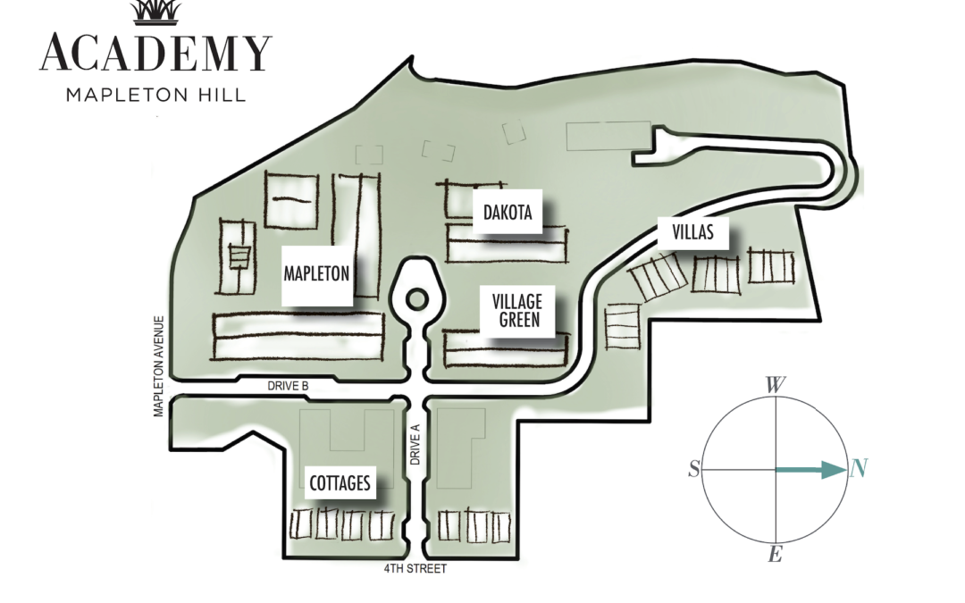 Site Plan Overview